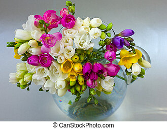 blooming flowers - vibrant multicoloured fresh spring...