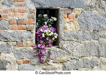 Ricetto of Candelo - Flowers - Ricetto di Candelo (Biella,...
