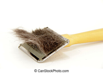 cat hairs in the brush - brush with cat hairs