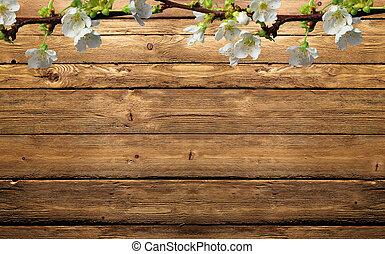 ramo di mela sulla testura di legno