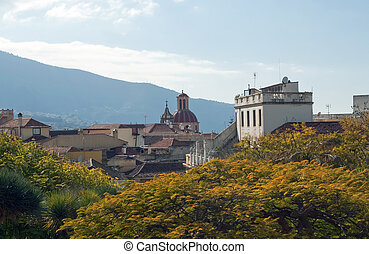Orotava from gardens - View of La Orotava from gardens, are...