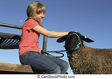 Cute Girl and 4-H Lamb - a cute girl pets her 4-H lamb