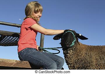 Cute Girl and 4-H Lamb - a cute girl pets her 4-H lamb