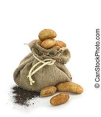 Potatoes in a burlap sack