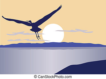 bird flying - vector bird flying