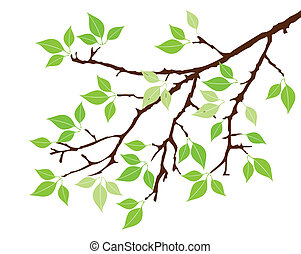 tree branch - vector tree with green leaves