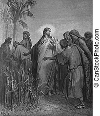 Jesus and the Pharisees - 1) Le Sainte Bible: Traduction...