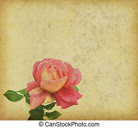 Roses design in grunge and retro style