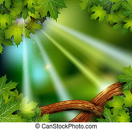 vetorial, fundo, místico, misteriosa, floresta,...