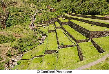 Agricultural terraces at the Inca site Pisac, Peru -...