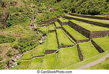 Agricultural terraces at the Inca site Pisac, Peru -...