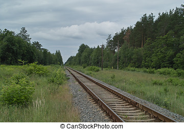 Railroad line in forest under cloudy sky - Secondary...