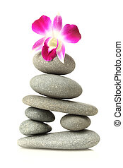 Orchid on stacked stones