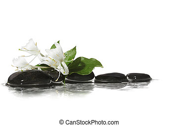 Stone on water with flowers