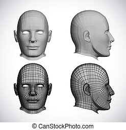 Set female heads. Vector