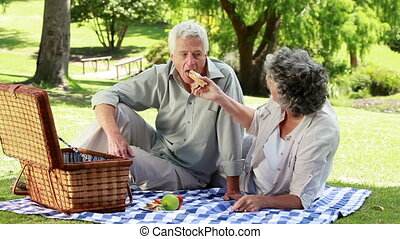 Happy mature people eating a picnic in a park