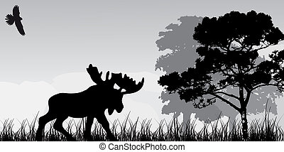 silhouette of elk and tree