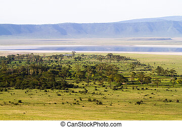 Ngorongoro crater - A stunning view from above of the...