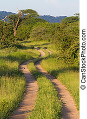 Scenic africa road - A very scenic African two track road in...