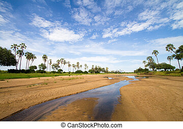 Ruaha scenery - A scenic riverbed in Ruaha National Park,...