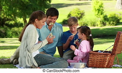 Family eating sandwiches during a picnic in a parkland