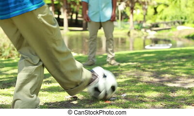 Soccer game being played by two members of a family in the...