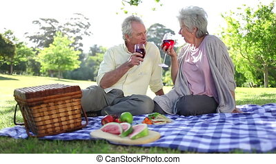 Mature couple drinking wines while at a picnic in a park