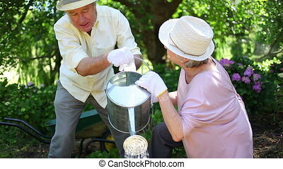 Mature couple watering together a garden