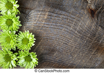 Wood background with green spring flower