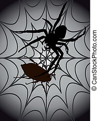 black spider with beatle in a spider web