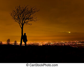 Silhouette of Man By Tree Overlooking Cityscape