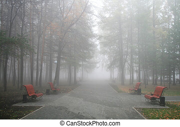Fog in a park - Four benches in a park