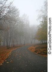Autumn park - Fog in an autumn park