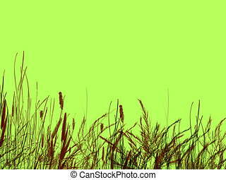 Grass and Reeds on Green Background Illustration Design