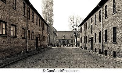 Auschwitz building blocks - Building blocks in a...