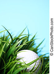 Golf ball in grass - Close up of golf ball in grass