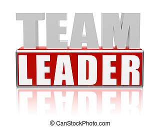 Team Leader ? 3d text with red box