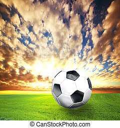 Football, soccer ball on green grass