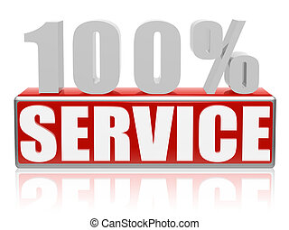 100 % service - 100 percent service - 3d text with red box