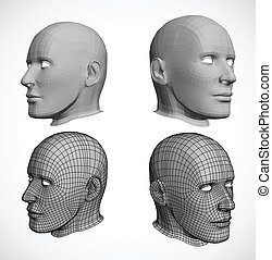 Vector heads