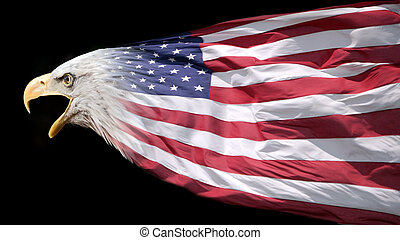 Eagle and flag - A bald eagle blended with the flag of the...
