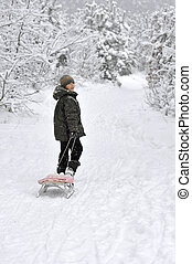 boy walking with sleds - smiling boy walking with sleds in...