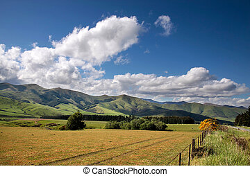 Farmland near Mossburn between Queenstown and Te Anau,...