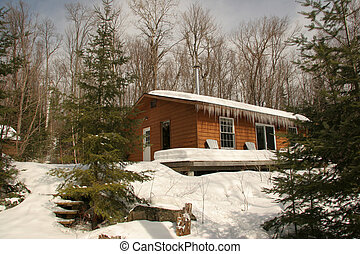 Winter Cottage - Rustic Cottage in Winter - Haliburton,...