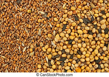 Fodder blends for domestic animals from soybean seeds,...