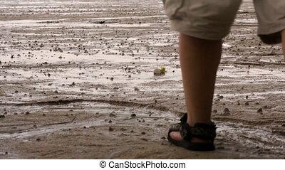 Man on Beach - Man walking on the beach towards golden...