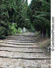 steep stone avenue to the shrine of St Margaret of Cortona