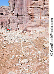 ruins of ancient city Petra and bedouin donkey