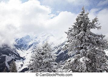 alpes, montagnes, hiver, brumeux, autrichien