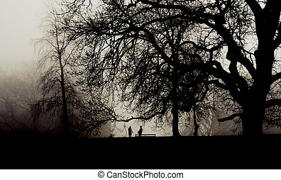 Two people meet in a misty park - Two people meet in a foggy...